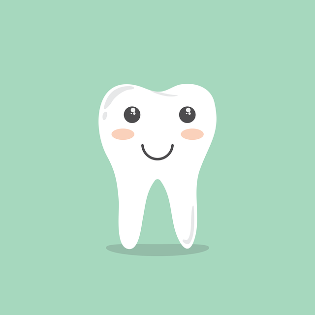 orthodontie oosterhout